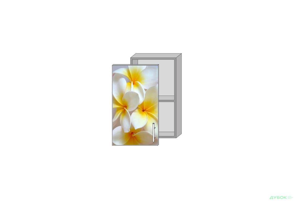 Модульна кухня Серія Mirror Gloss Верх 40 вітрина фотодрук