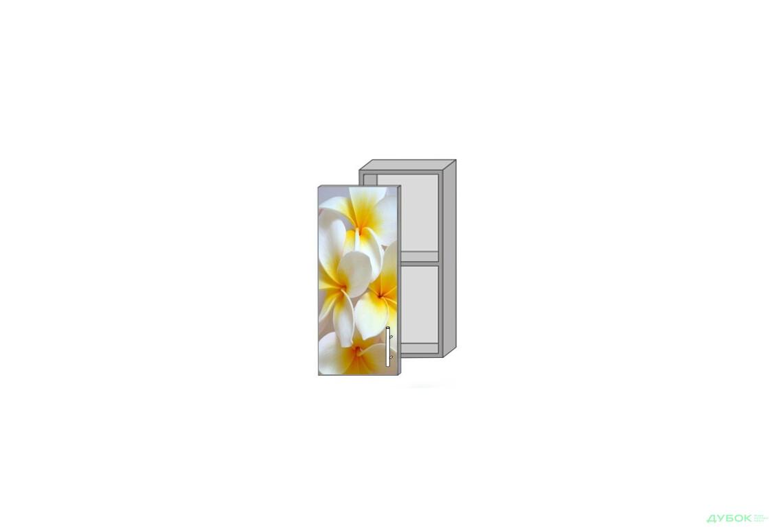 Модульна кухня Серія Mirror Gloss Верх 30 вітрина фотодрук